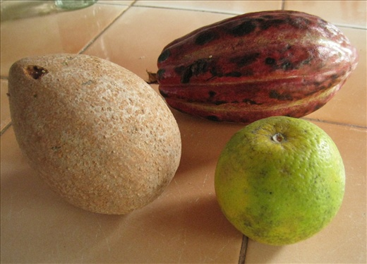 The typical orange here has green skin and is not that sweet, but it's very juicy. The fruit to the left is a