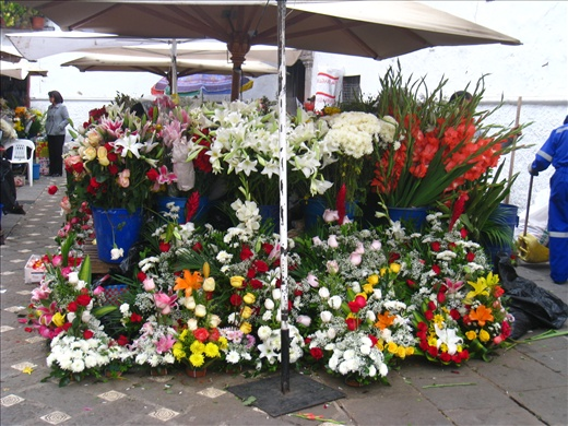 Popular flower market in Cuenca. With the abundance of roses and other flowers in Ecuador, this is the best they could do?? My mom would have come up with tons better arrangements.
