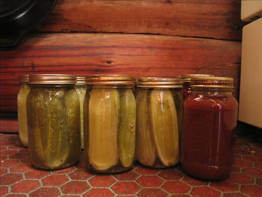 Homemade pickles and plum sauce. I learned canning and helped can them. They are now good for a few years.