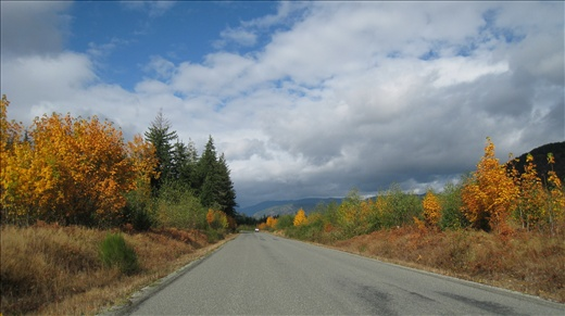 Autumn has arrived on Vancouver Island!