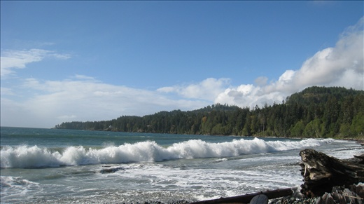 French Beach on the west coast of Vancouver Island