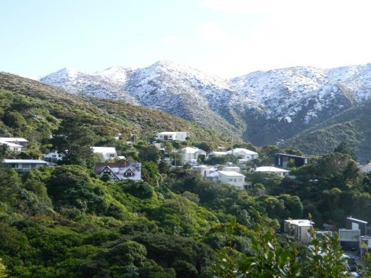 Snow in Wellington - quite rare to have this view for three days