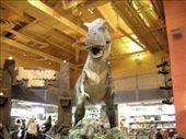 T-Rex at Toys R Us: by poita_j, Views[379]