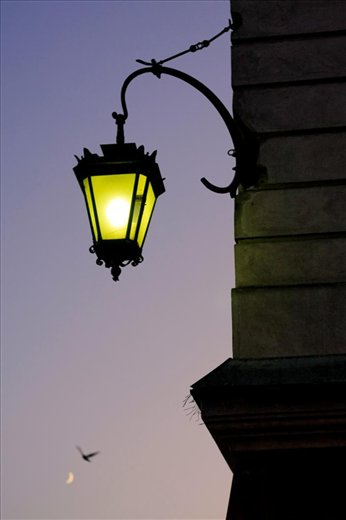 Moon, pigeon and yellow lamp.