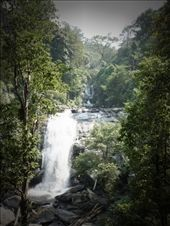 Waterfall at Don Inthanon National Park : by pommie51, Views[372]