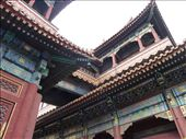 Lama Temple: by pommie51, Views[132]