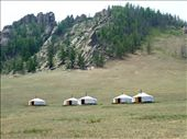 The Mongolian Ger Camp: by pommie51, Views[266]