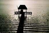 Too perfect, Bacalar a lagoon so magical, so perfect you feel in heaven.: by pompa, Views[286]