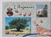 From Fabio Rui (Italy): by postcards, Views[443]