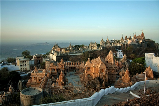 The sea of Jain temples at the summit of Shatrunjay