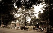 Outside Victoria Memorial - a legacy lived from the time of Her Majesty: by proverbial_vagabond, Views[171]