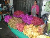 Flower market: by pshah13, Views[174]