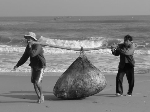 Bringing in the fishing nets