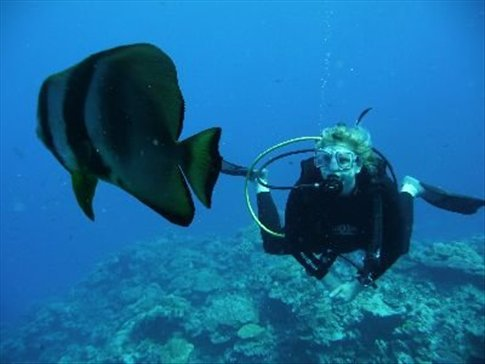 Christina and batfish