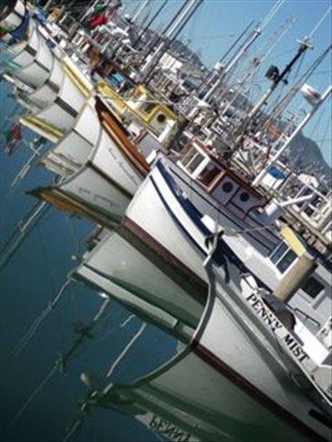 Fishing boats, Fishermans Wharf, San Fracisco