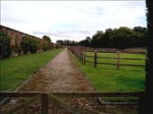 Paddocks inside the walled garden.: by quando, Views[512]