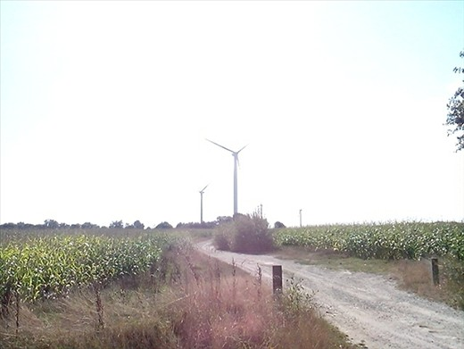 Small groups of wind turbines everywhere.  These one's weren't moving.  No wind!