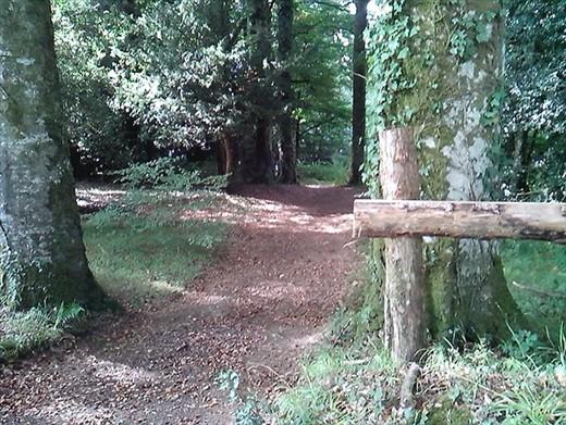 Km's of walking trails