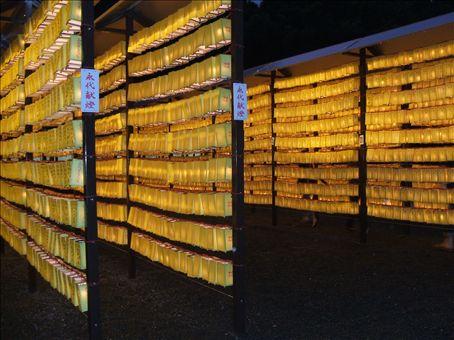 the matsuri festival