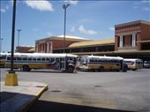If its one thing the Panamanians how to do, its bus transport - the central bus terminal.: by rachel_and_daniel, Views[2319]
