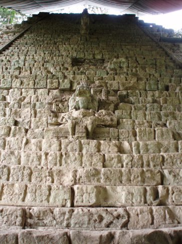 Heiroglyph stairway - histories of all the rulers of Copan