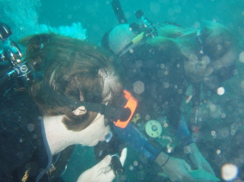 Rachel learns to ID corals and sponges from Andy, our marine biologist guide