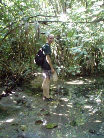 Daniel goes all jungle.