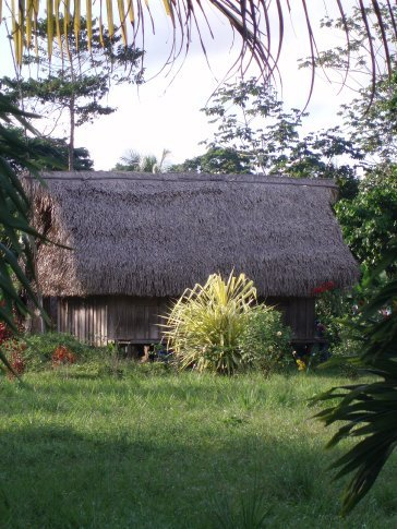 Good example of a lovingly kept Mopan Mayan house and garden, Maya Center