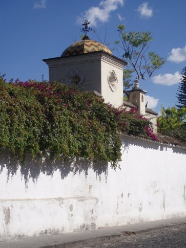 Garden wall, Antigua.