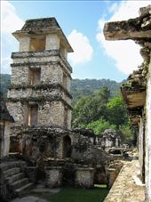 The palace and observatory, Palenque: by rachel_and_daniel, Views[271]