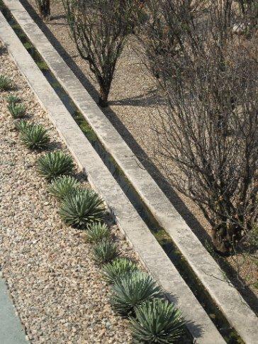 Channel bisection, botanical garden, Oaxaca