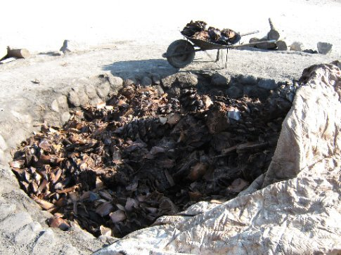 Mezcal making - roasting the agave hearts