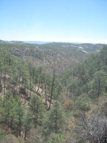 The wild lands of the Sierra Tarahumara