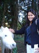 My new pony friend: by rachel_simon, Views[366]