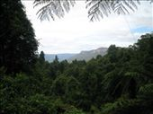 by racheltara, Views[93]