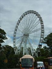 The Queen must love ferris wheels. .. : by rachthe1st, Views[104]