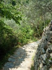 steep and narrow paths: by rachthe1st, Views[72]