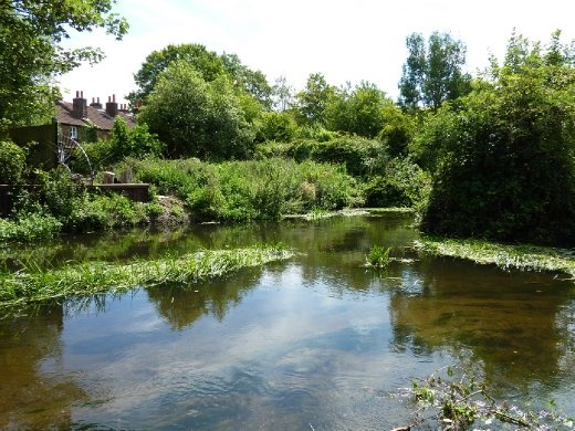 Walking beside a river. I think I was on the Wandle Trail