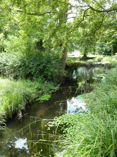 River leading into Morden Hall Manor