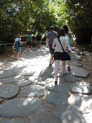 A Roman road - All roads used to lead to Rome (and the Roman Forum)