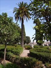 Gardens on the top of the Forum where some of the Emperors used to live: by rachthe1st, Views[130]