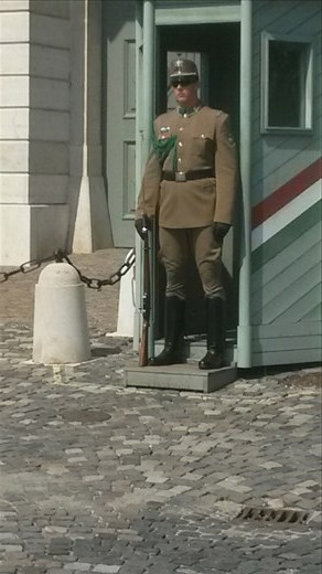 A guard at the palace grounds, it was so hot out and he was wearing all those clothes straight faced!