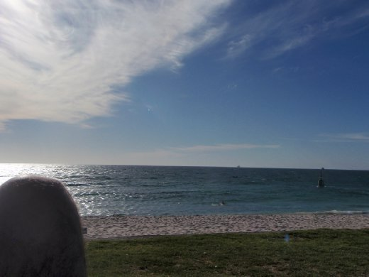 The beach! Perth is so pretty. And the weather was exactly like this the whole time. Amazing.