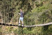 Walking the bridge made from timber and vines. Tess was too scared.: by rangers, Views[264]