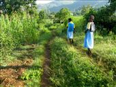 In the case of Mbaka Oromo Primary School, the answer is more than 600. Waves of children clad in pale blue and yellow uniforms trek up to ten miles a day to get an education.: by rarudwall, Views[1188]