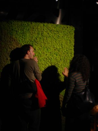 Rhys and I checking out the Norwegian moss (fascinating!) at London Design Week