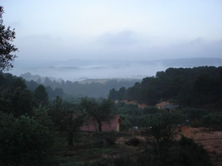 Finca on a misty morning: host's house at front, then barn, then our casa furtherest away on right