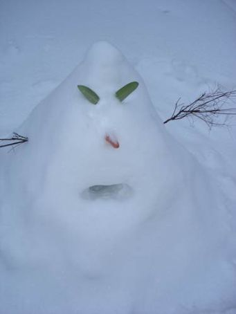 Our first snowman attempt (its hard with powder in our defence...) now lovingly referred to as our snowmonster!!