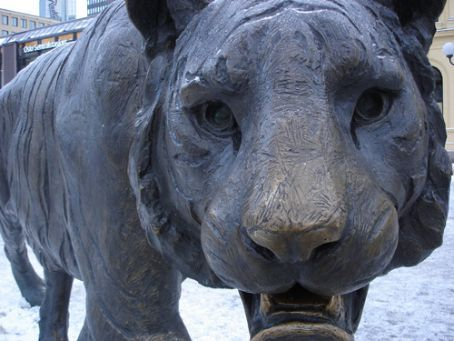Norwegian wildlife.... in the Oslo central station square