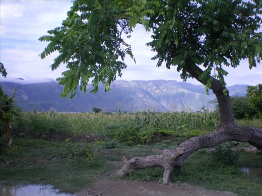 Even though I loved helping after the Earthquake; this is the Haiti I want to remember; the beautiful nature side.